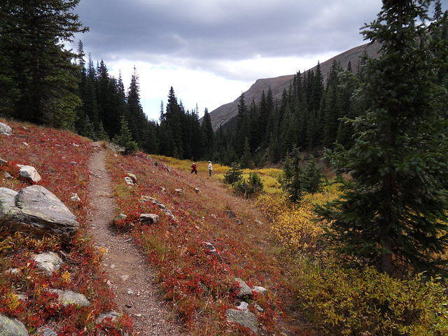 Rocky Mountain NP trail