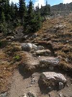 Trail to Chapin Peak